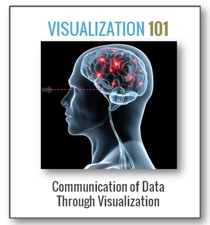 Neubrain Vizualization 101 Training